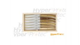 Coffret 6 couteaux de table laguiole G. David