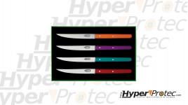 Coffret couteau de table laguiole G. David avec manche en bois coloré HYP