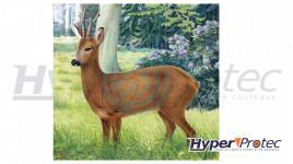 Blason d'Archerie Poster Cerf couleur de 78x79 cm