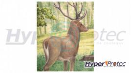 Blason d'Archerie Poster couleur Cerf 95 x118 cm