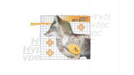 6 cibles Coyote en Rayon X - 47x42 cm