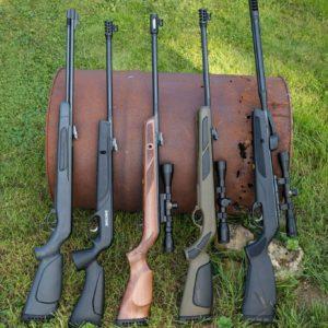 Top 5 carabine à plomb puissante